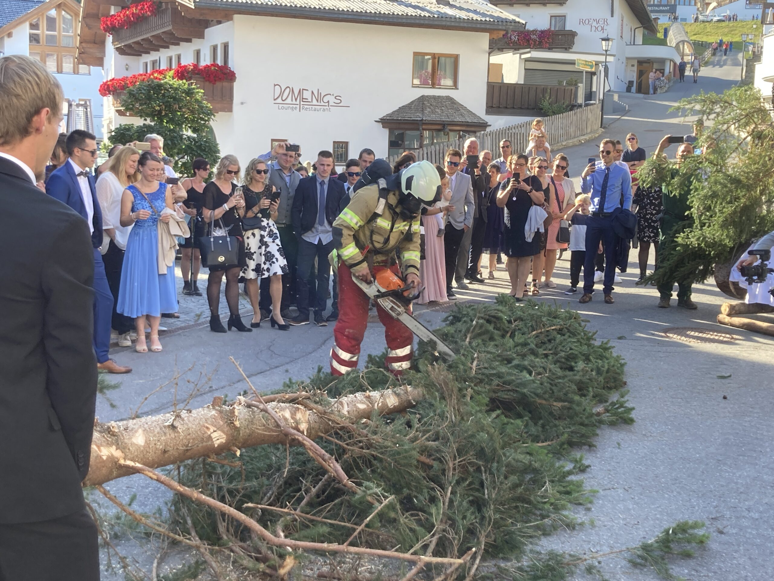 Aufsägen des Baumes